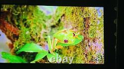 Lg 65 Pouces Smart Tv 4k Ultra Hd Hdr